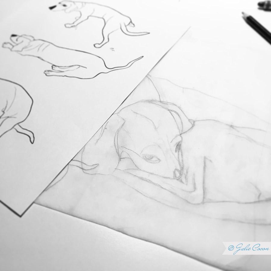 Textildesign, Muster Hunde, Grafikdesign, Zeichnungen, Julie Cocon